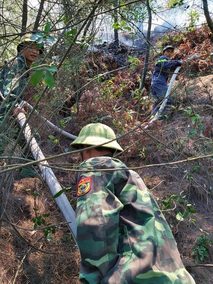 Nghi dân đốt vàng mã rằm tháng 7 gây cháy rừng ở Nghệ An ảnh 3