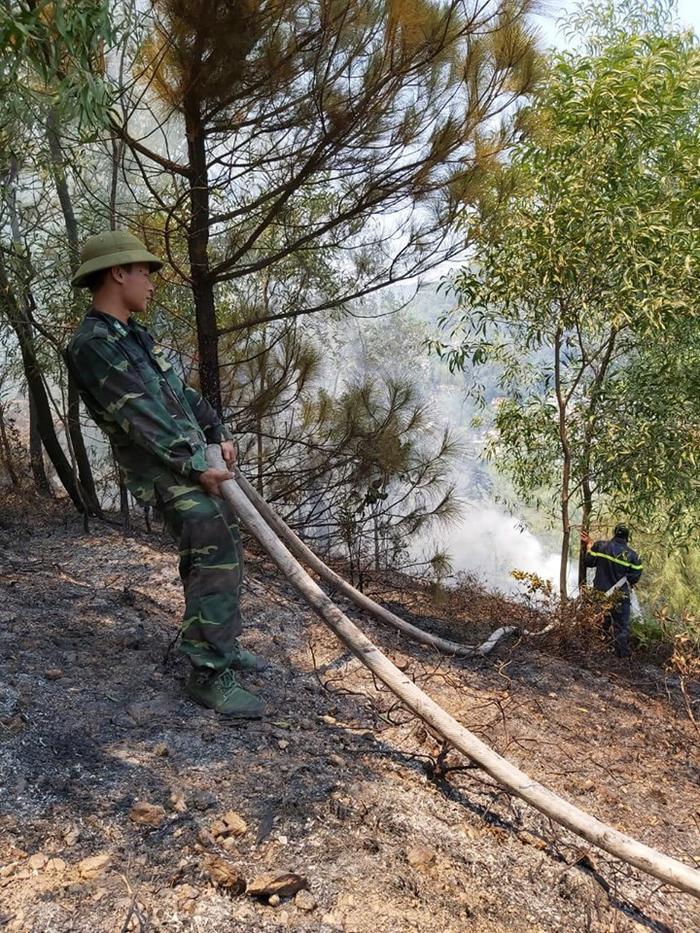 Lực lượng chức năng cứu rừng