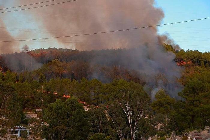 Núi Ngũ Phong ở Thừa Thiên - Huế cháy lớn. Ảnh: báo Pháp luật TP.HCM
