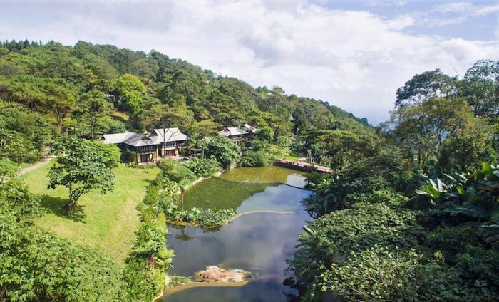 Vườn quốc gia Ba Vì là một trong những điểm du lịch hot nhất Việt Nam. (Ảnh: vntrip)