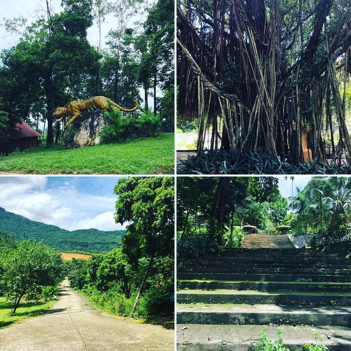 Sơn Tinh Camp mang vẻ đẹp thiên nhiên nguyên sơ giúp bạn có những trải nghiệm mới mẻ. (Ảnh: @honeyx611)