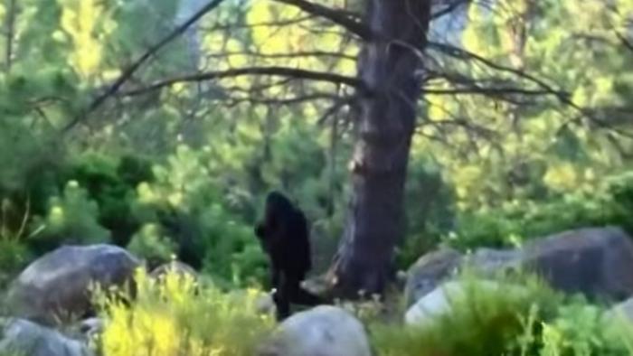 """Đoạn phim Bigfoot có tên """"Ngày độc lập""""."""