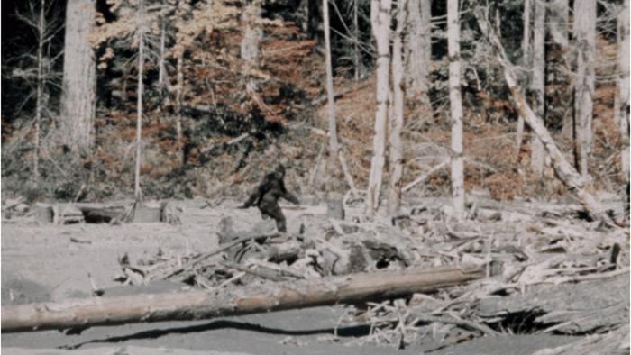 Đoạn phim về Bigfoot của Roger Patterson và Bob Gimlin.