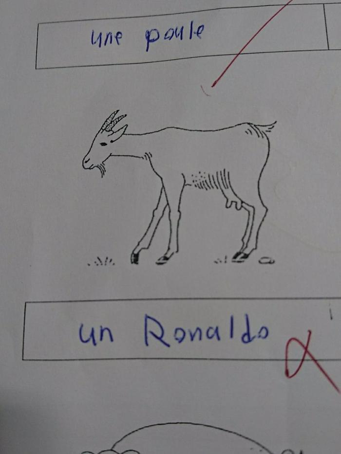Hình ảnh Ronaldo được đưa vào trong bài thi.