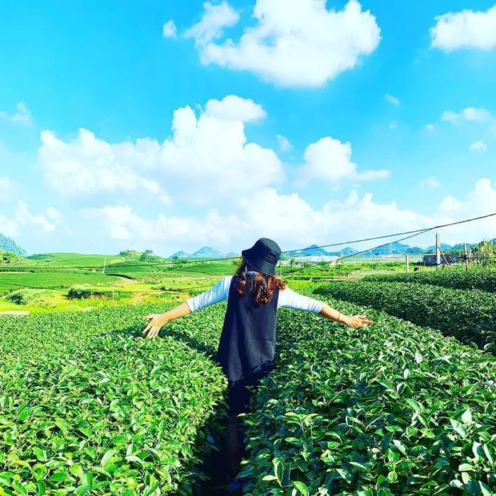 Với khi hậu mát mẻ, trong lành và cảnh thiên nhiên tuyệt đẹp, Mộc Châu sẽ giúp bạn và gia đình có những trải nghiệm đáng nhớ khi đến đây.