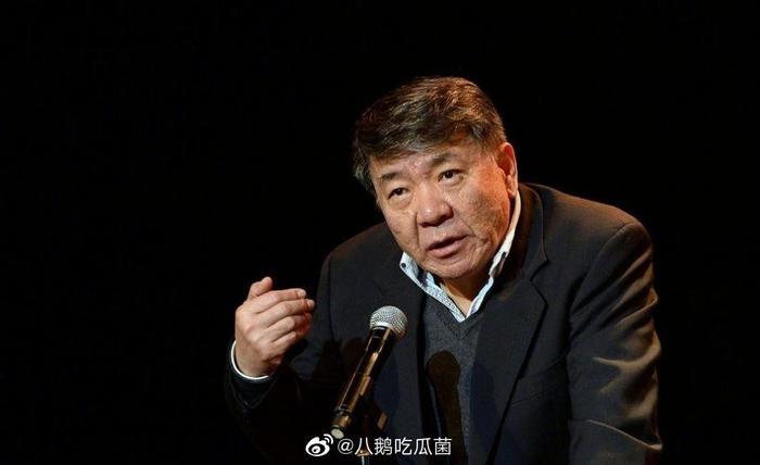Triệu Lệ Dĩnh hợp tác với đạo diễn Hậu cung Chân Hoàn truyện Trịnh Hiểu Long? ảnh 3