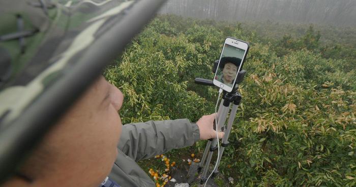Sự phổ biến của livestreaming, nhiều công cụ hỗ trợ và mối quan tâm của người dùng với nguồn gốc thực phẩm khiến ngày càng có nhiều nông dân như anh Zhong. (Ảnh: SCMP)