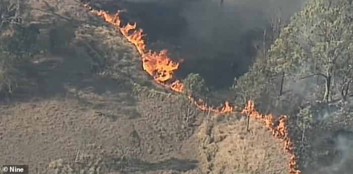 Các đám cháy ở Australia đang vượt ngoài tầm kiểm soát và đe dọa đến tính mạng người dân và động vật.