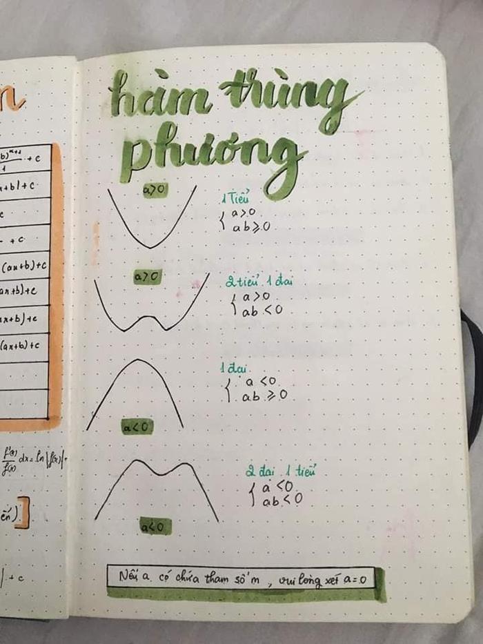 Những đồ thị thông thường cũng được học sinh này điểm tô thêm một chút sắc màu