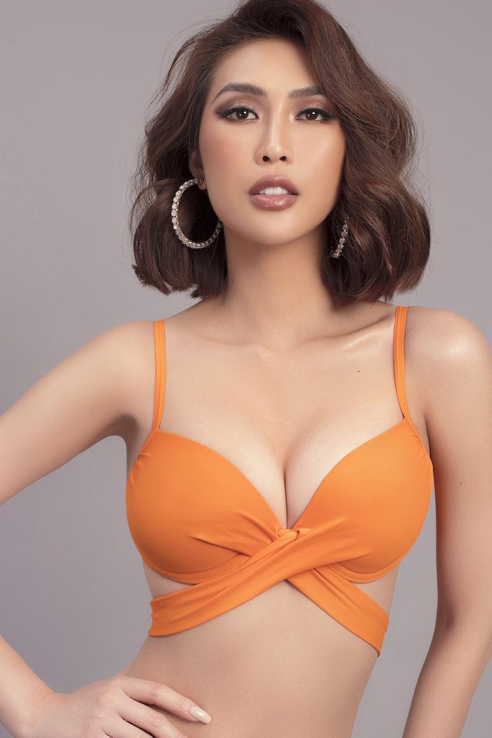 Hoa hậu sắc đẹp Châu Á Tường Linh chính thức đăng ký thi Hoa hậu Hoàn Vũ Việt Nam 2019 ảnh 3