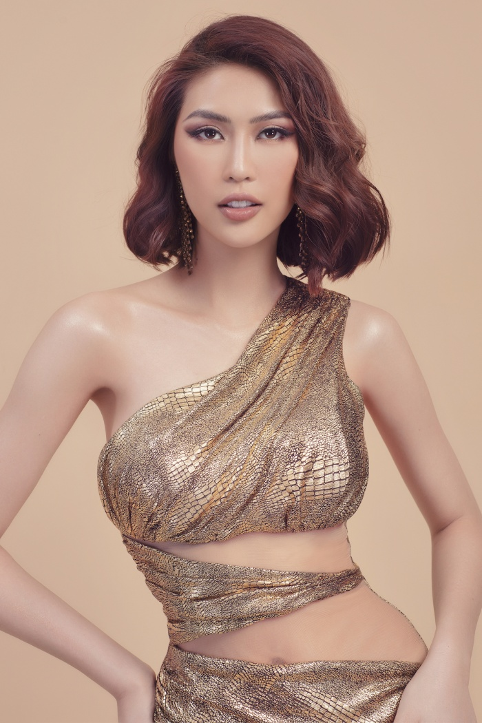 Hoa hậu sắc đẹp Châu Á Tường Linh chính thức đăng ký thi Hoa hậu Hoàn Vũ Việt Nam 2019 ảnh 2