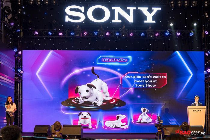 Sau nhiều năm chờ đợi, cuối cùng chú chó Aibo thế hệ mới nhất của Sony đã được chính thức đưa vào tham gia trình diễn tại Sony Show 2019.