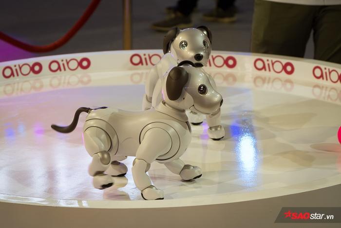 Chú chó robot được trang bị 2 camera, một ở mũi và một ở phía trên đuôi, đồng thời có một loạt các cảm biến xung quanh cơ thể và nó có hệ thống nhận biết sáu trục cho phần đầu và thân.