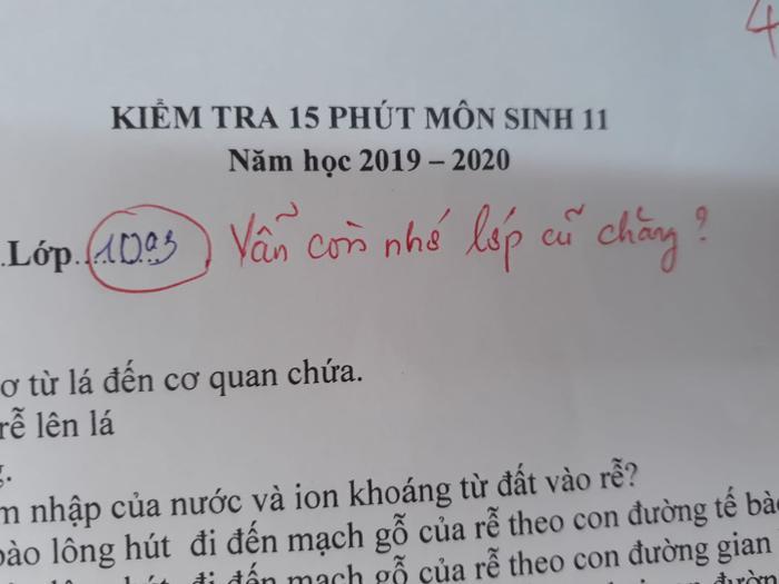 Kiểm tra môn sinh lớp 11, cớ sao lại ghi lớp 10A3 nhỉ? Vẫn còn nhớ lớp cũ chăng? Ảnh: Trọng Nghĩa/Trường Người Ta