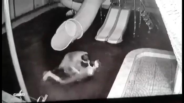 người chồng dìm vợ xuống nước rồi kéo lên tát tới tấp.