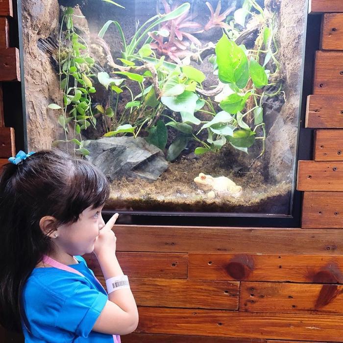 Cô bắt thích thú ngắm nhìn cảnh vật xung quanh