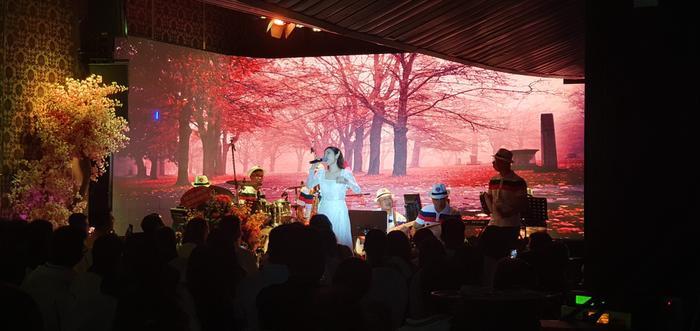 Fan nhí vây kín ngọc nữ bolero Tố My đến nửa đêm không chịu về trong đêm nhạc tại Đà Nẵng ảnh 6