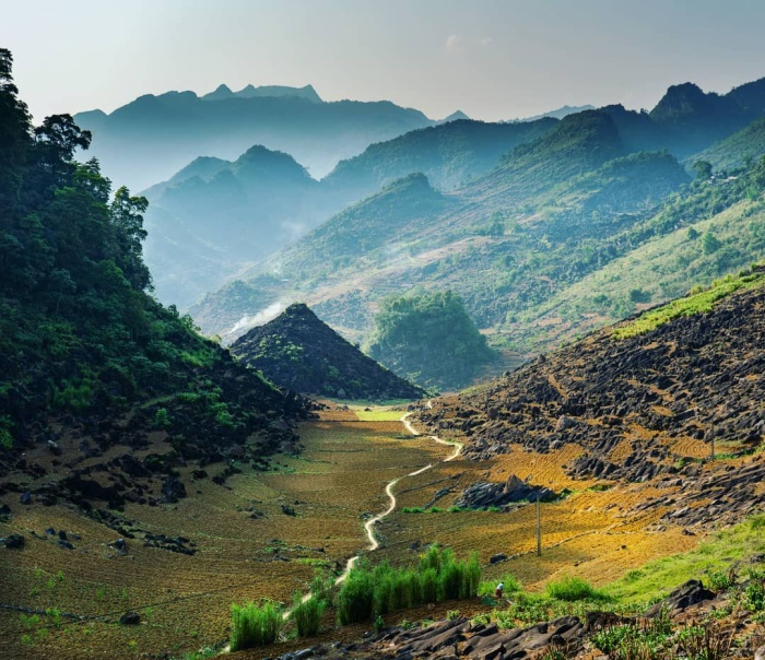 Một con đường chạy xuyên qua vùng thung lũng xanh mướt.