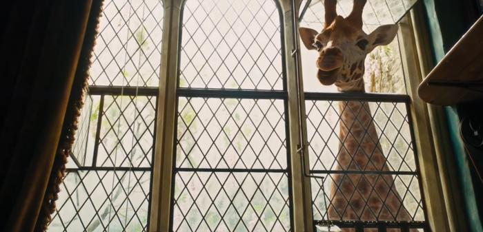 Trailer 'Dolittle': Robert Downey Jr. có thể nói chuyện với động vật? ảnh 3