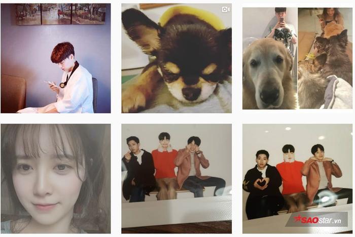 Ahn Jae Hyun đã đăng ảnh selfie của Goo Hye Sun, cập nhật khoảnh khắc đời thường của hai vợ chồng bên thú cưng. Ở phía dưới là ảnh chụp cùng Jung Il Woo và Lee Jung Shin (CNBLUE) hồi tham gia phim 'Lọ Lem và bốn chàng hiệp sĩ' năm 2016.