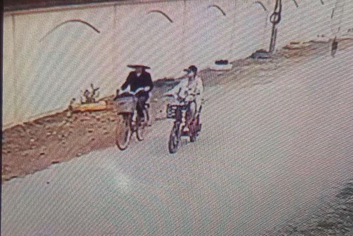 Hình ảnh bà Hường đi cùng cháu gái được trích xuất từ camera.