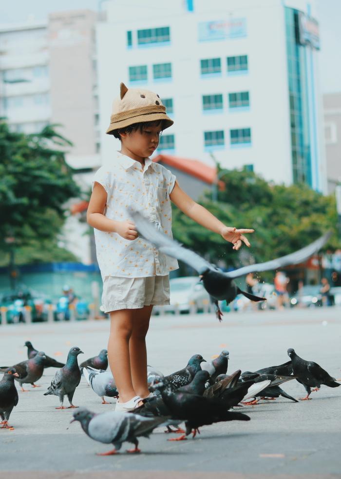 Sài Gòn vào đông: Bước chuyển mùa âm thầm và nhẹ nhàng chẳng ai hay biết ảnh 7