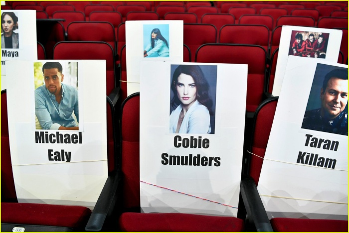 Bên cạnh các danh ca, AMAs cũng sẽ có sự đồng hành của các diễn viên tài năng điển hình như: Michael Ealy, Cobie Smulders và Taran Killam.