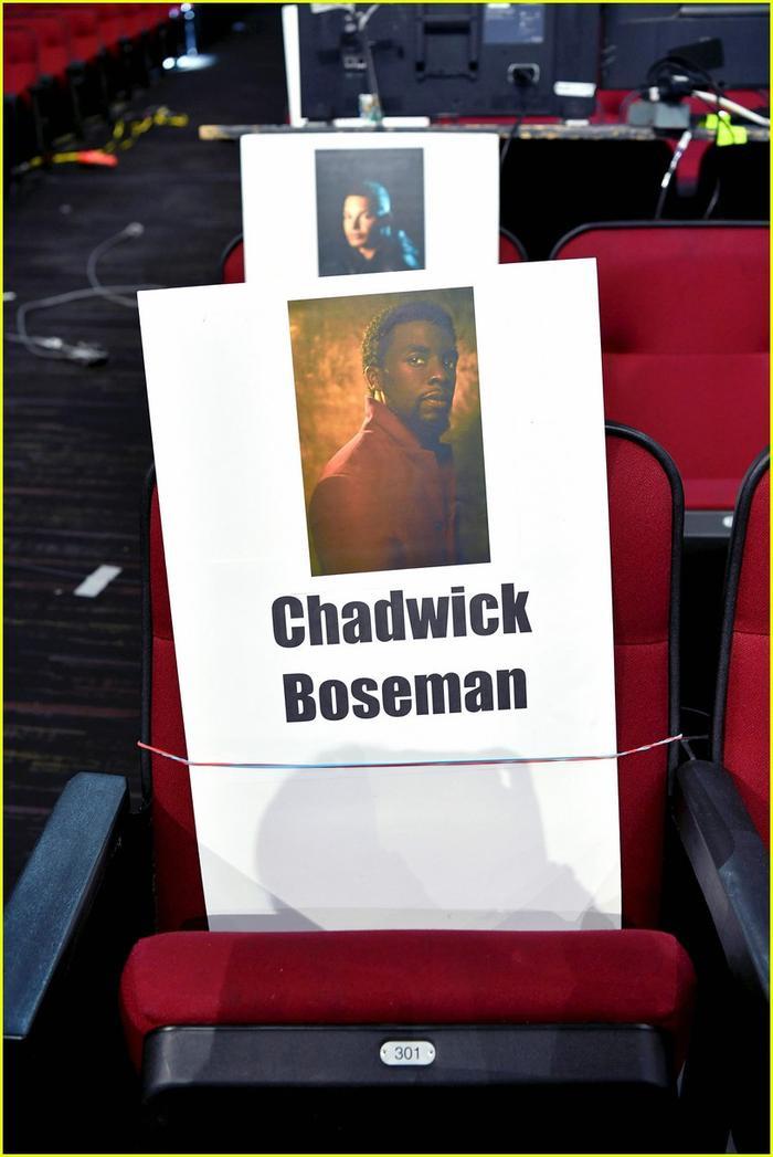 Chàng Báo Đen Chad Boseman cũng là cái tên được đón chờ.