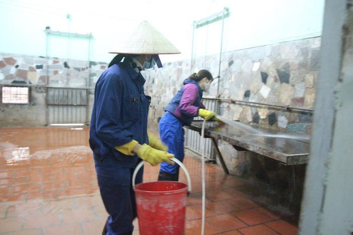 Hằng ngày công nhân quét dọn, rửa sạch sẽ nơi ở của hổ, sư tử…