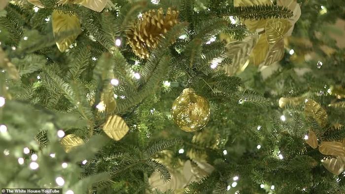 Nhà Trắng đẹp lung linh dưới bàn tay bà Melania Trump mùa Giáng sinh - Ảnh 17.
