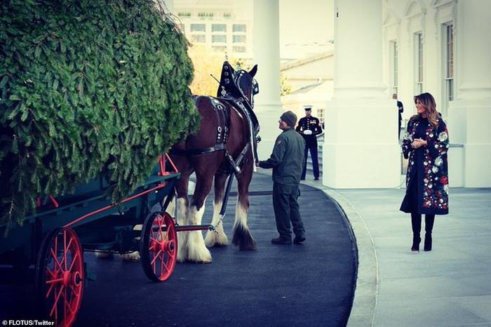 Nhà Trắng đẹp lung linh dưới bàn tay bà Melania Trump mùa Giáng sinh - Ảnh 19.