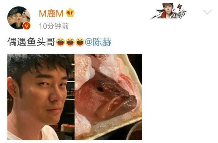 Lộc Hàm đăng ảnh so sánh Trần Hách với đầu cá