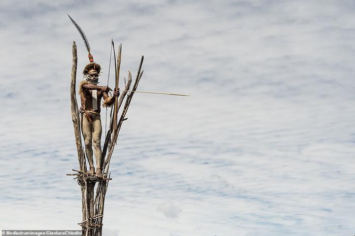 Săn bắn trên ngọn cây