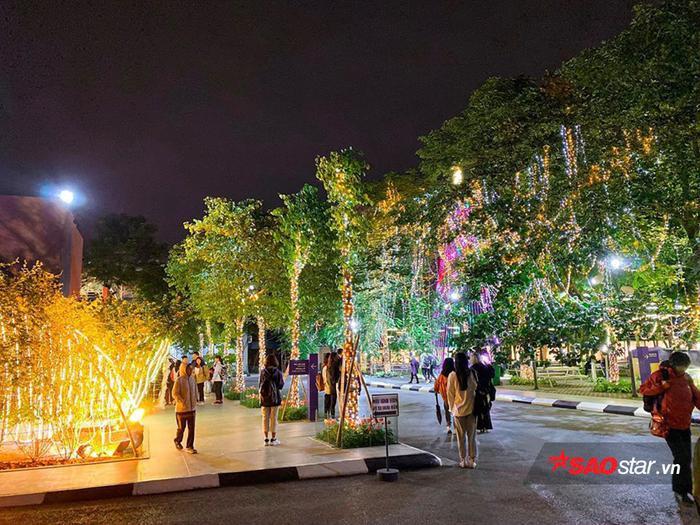 Khoảng sân quanh vườn trường được trang trí bằng dàn đèn lấp lánh đầy lung linh