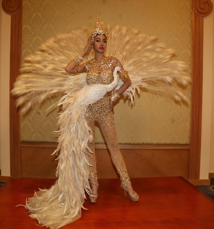 Trang phục dân tộc của đối thủ Thúy An ở Miss Intercontinental bị chê nghèo nàn, ví von giống đồ ngủ ảnh 22