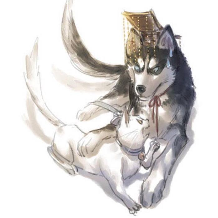 Phim đam mỹ Husky và sư Tôn mèo trắng của hắn của La Vân Hi và Trần Phi Vũ đổi tên ảnh 2