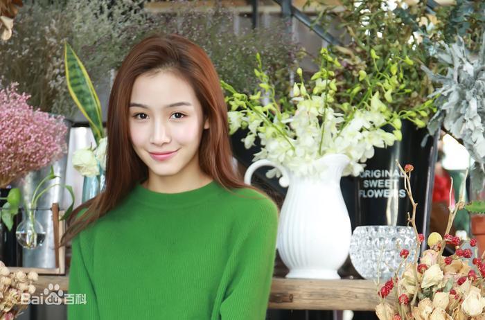 Vu Chính muốn bạn gái cũ của Hứa Khải khắc họa thành Triệu Lệ Dĩnh trong bộ phim ám chỉ chuyện tình với Trần Hiểu ảnh 2