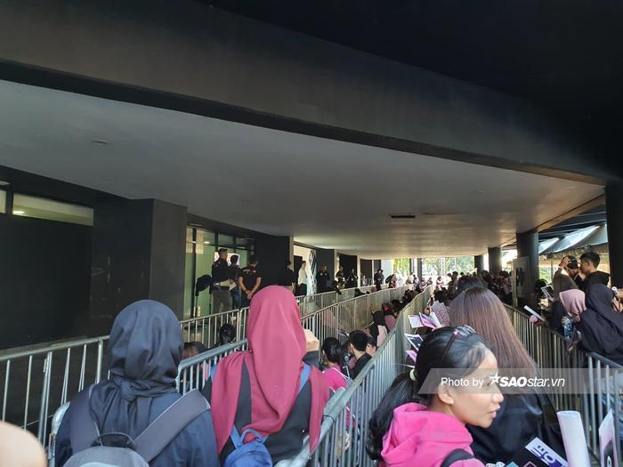 Số lượng fan đông đảo lên đến hàng chục nghìn người.