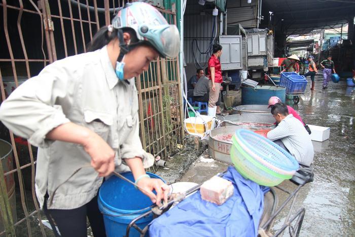 Theo đánh giá của chị Hà ở Gia Lâm, giá cá năm nay tăng hơn so với năm ngoái 10.000 đồng, tuy nhiên cá đều và đẹp hơn mọi năm.