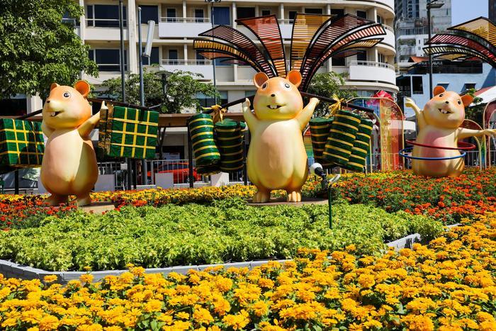 Ngắm đường hoa Nguyễn Huệ mừng xuân Canh Tý 2020 trước giờ mở cửa ảnh 3