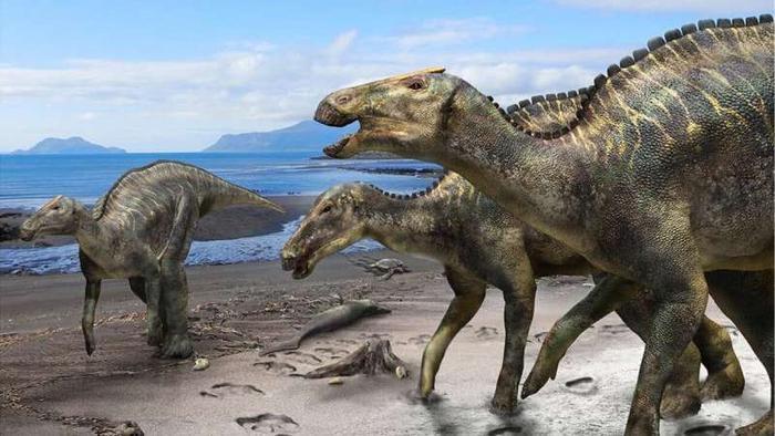 Khủng long mỏ vịt hadrosaur (ảnh minh họa).