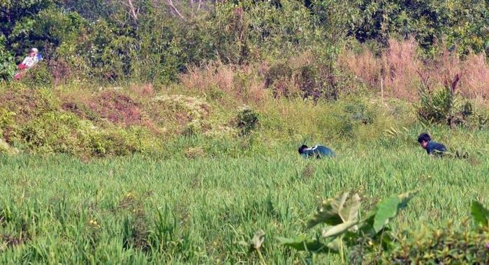 Lực lượng chức năng dò tìm bom mìn ở hiện trường Tuấn khỉ bị tiêu diệt ảnh 1
