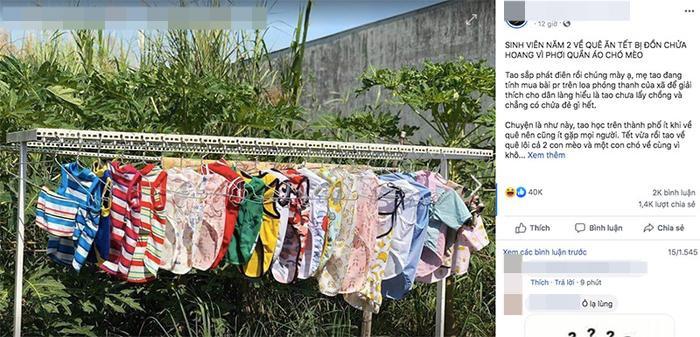 Nữ sinh về quê ăn Tết bị hàng xóm đồn chửa hoang trên thành phố vì phơi nhiều quần áo chó mèo ảnh 0