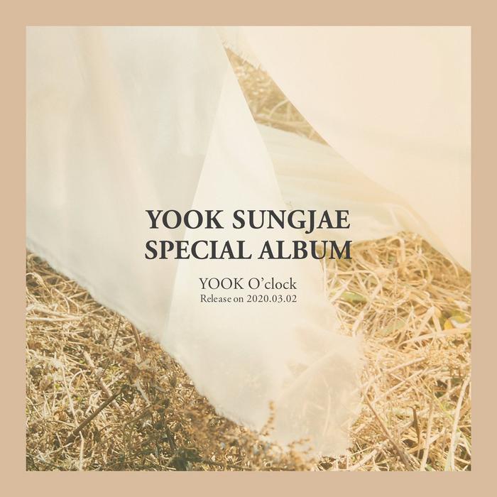 Vừa kết thúc dự án âm nhạc, Yook Sungjae (BTOB) lại rục rịch chuẩn bị phát hành album solo mới ảnh 1