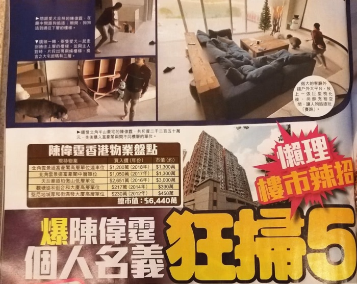 Dù là phú nhị đại nhưng Trần Vỹ Đình vẫn tự lực cánh sinh: Trong 8 năm phát triển sự nghiệp mua được 5 căn nhà ở Hong Kong ảnh 6