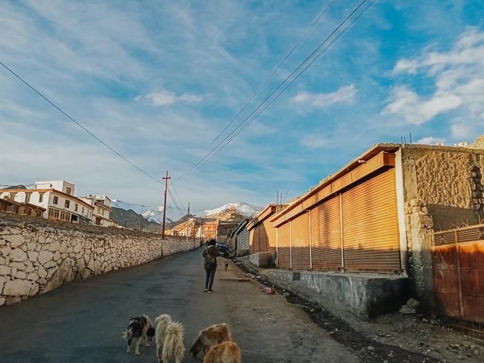 Những trải nghiệm không dành cho những người thích an nhàn tại Ladakh  Tiểu Tây Tạng của Ấn Độ ảnh 9