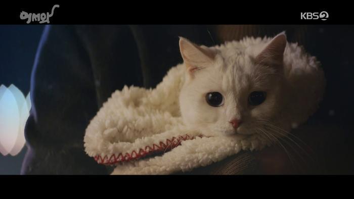 Phim của L (Infinite) đạt rating khá thấp khi ra mắt Phim của Kim Dong Wook và Moon Ga Young dẫn đầu đài trung ương ảnh 4