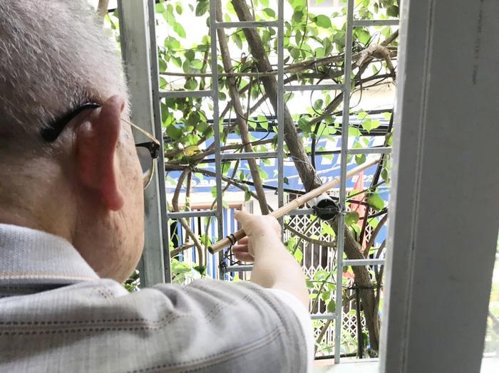 Bên trong ông làm hệ thống thép giúp cây bám trụ tốt, giữ không gian thoáng mát.