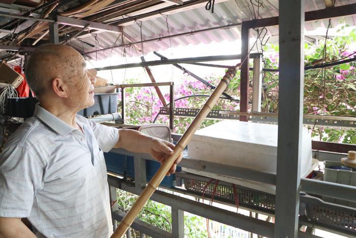 Ngôi nhà 5 tầng phủ kín hoa giấy tuyệt đẹp ở Hà Nội: Mùa hè mát rượi, hàng xóm còn bảo nhờ ông mà tôi được ngắm hoa đẹp ảnh 5