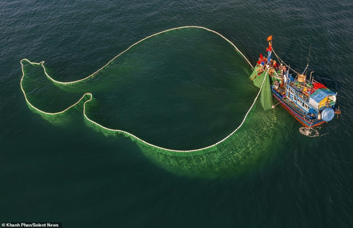 Các ngư dân ra khơi mỗi ngày để bắt đàn cá cơm khổng lồ.